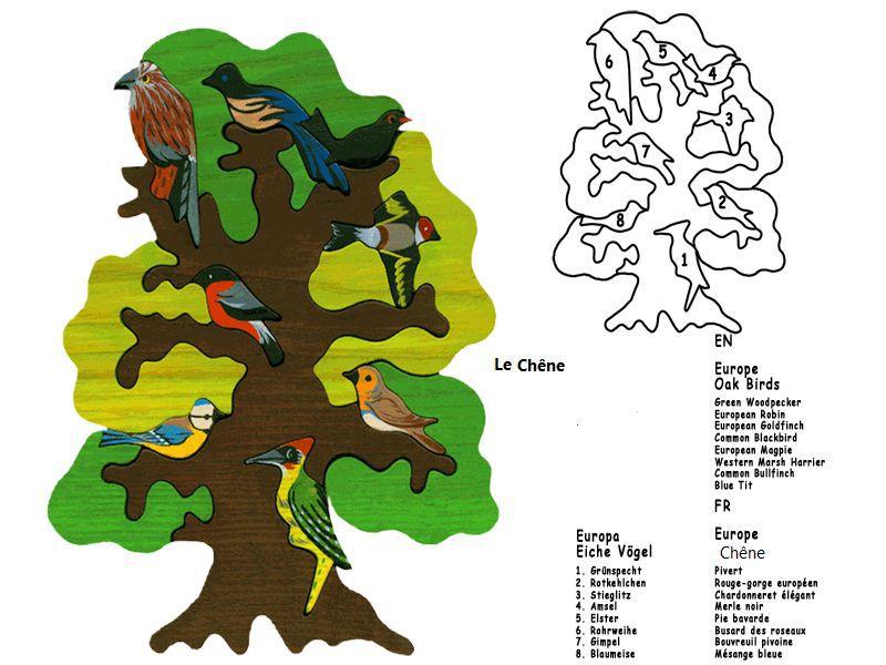 Puzzle arbre :  L'Europe - Le Chêne